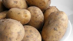 Dieta De Patata
